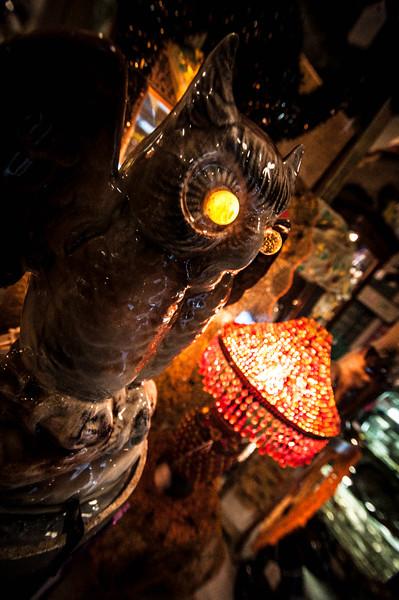 clay's owl.jpg