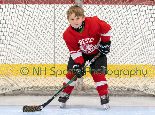 2019 Rochester Youth Hockey