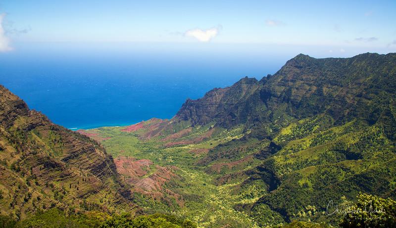 kauai2_20120714_2415.jpg