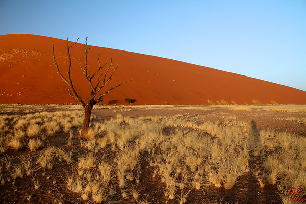Contrasting colors of Namibia