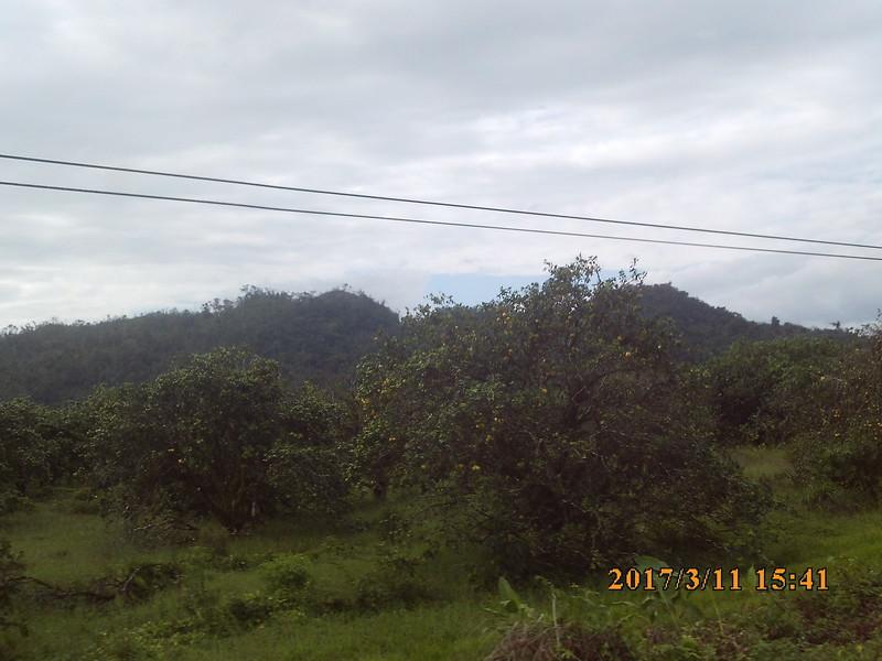 SUNP0588.JPG