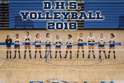 DHS Volleyball