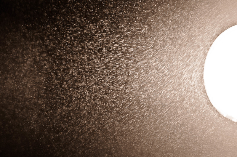 mist (1 of 1).jpg