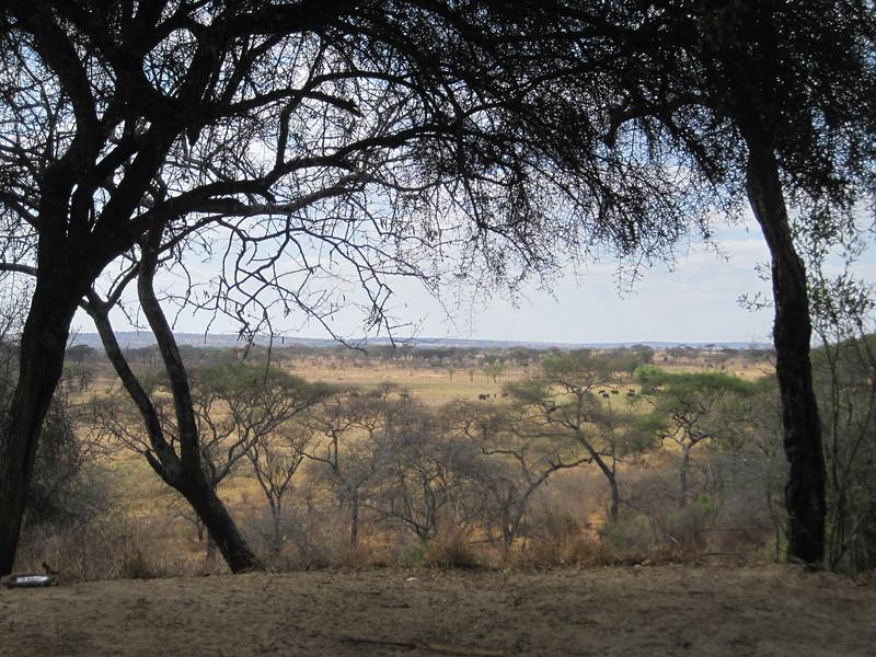Tanzania14-3221.jpg