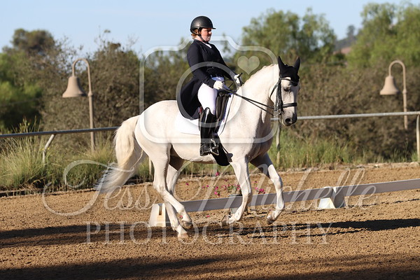 Spirit Equestrian September 2021