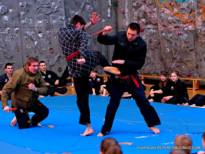 Hapkido show Cracow january 2015