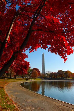 DC Fall 2014