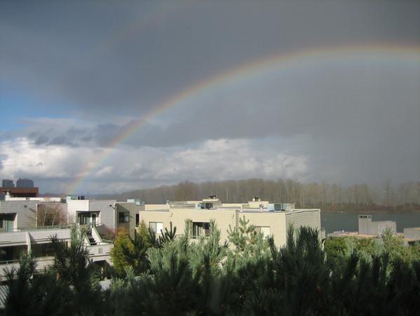 1111 rainbow.JPG