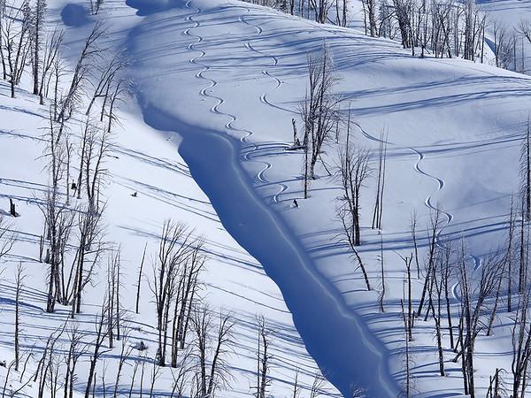 Yellowstone Ski Tours