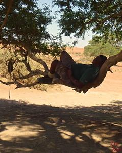 Review Wild Dog Safari 2 week tour Namibia: guide 1