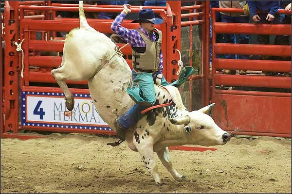 2019 Bull Riding