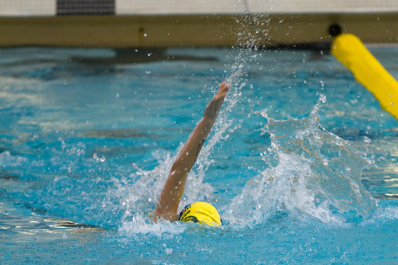 swimming-110109-128.jpg