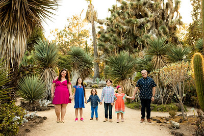 J Lapetina Cactus Garden Short Story 2020