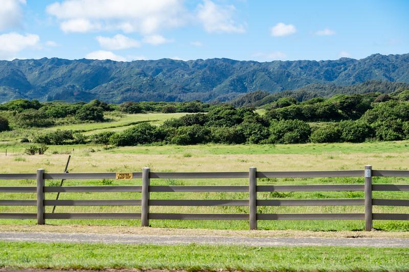 Hawaii-KAYO-118.jpg