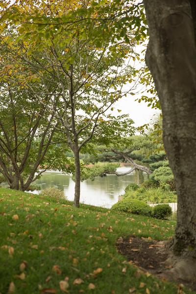Chicago Botanic Garden 096.jpg