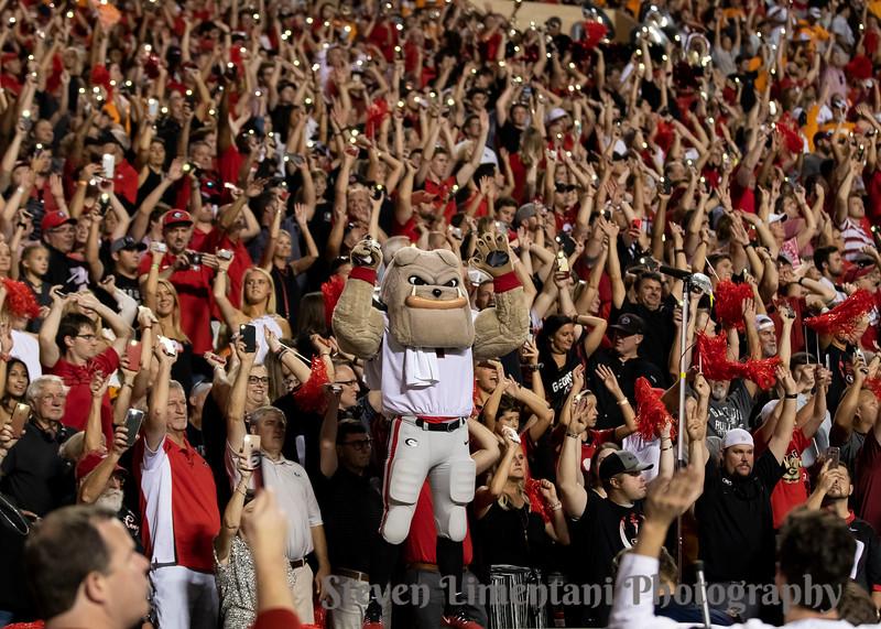 Georgia fans, Hairy Dawg