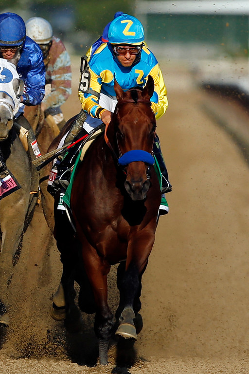 . American Pharoah (5) leads the rest of the field down the back stretch on the way to a Triple Crown victory during the 147th running of the Belmont Stakes horse race at Belmont Park, Saturday, June 6, 2015, in Elmont, N.Y. (AP Photo/Jason DeCrow)