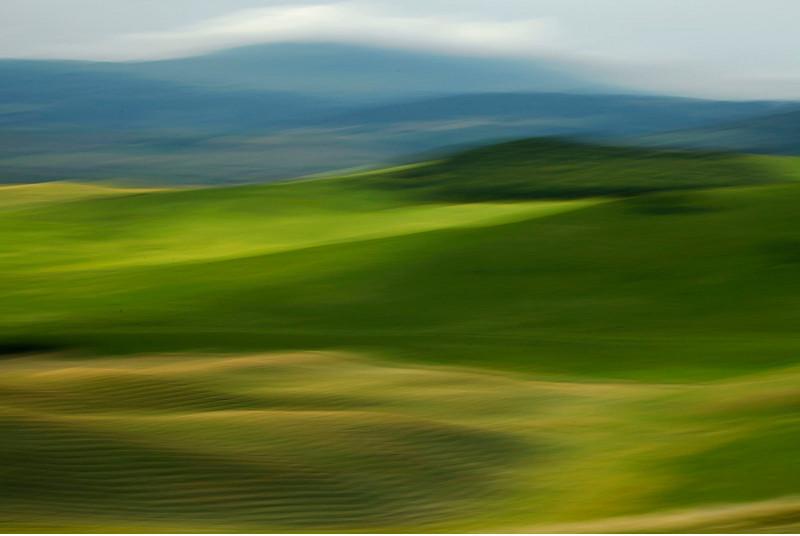 Wheatfields abstract, Tuscany, italy