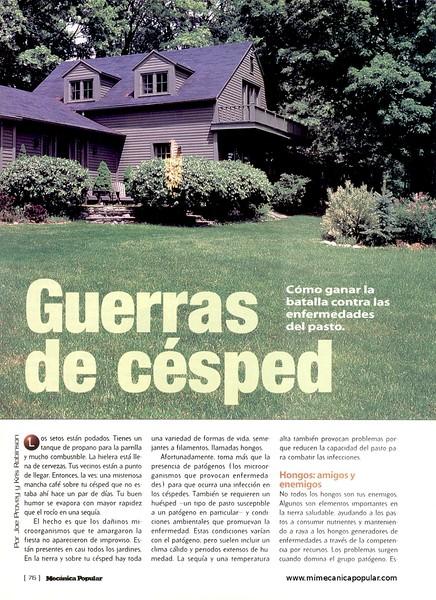 guerra_de_cesped_junio_2001-01g.jpg
