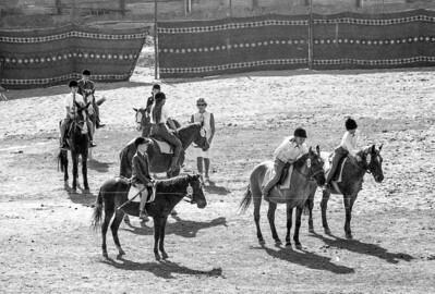 Delhi Horse Show 1968