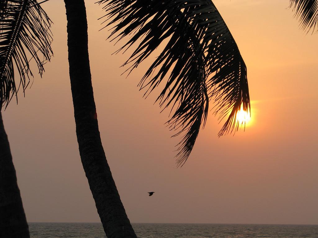 pozikkara beach, india