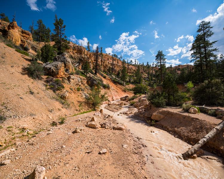 Bryce Canyon-19.jpg