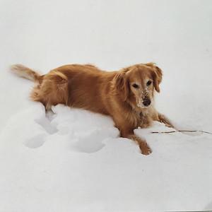 1998 - ST MAARTEN, BELIZE