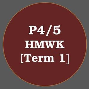 P4/5 HMWK T1