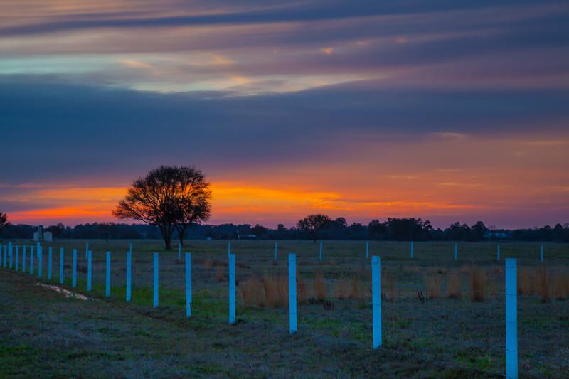 2015_3_13 Sunset on Telge-6596.jpg