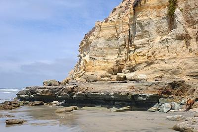 Del Mar Beach Area Photos