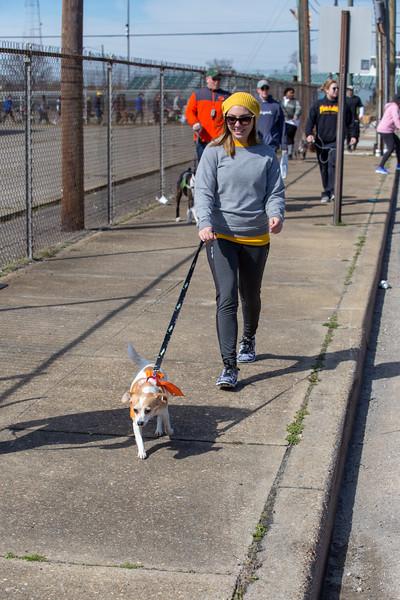 Richmond Spca Dog Jog 2018-746.jpg