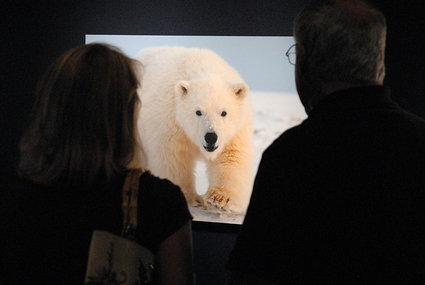 Burke Museum Lecture: Facing the Truth of a Warming World