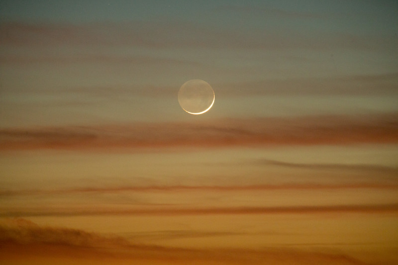 20171119-moonset-TULL8244.jpg