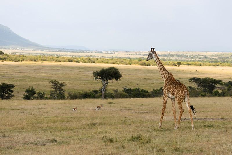 2016 Mercy House Vision Trip Kenya - Day 4 022.jpg
