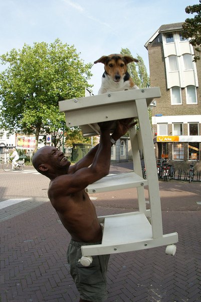 This is in Gouda.  Seeing how we were in Gouda for an hour and we saw this guy hoisting his dog up on a small rolling table, I can only assume it happens every day