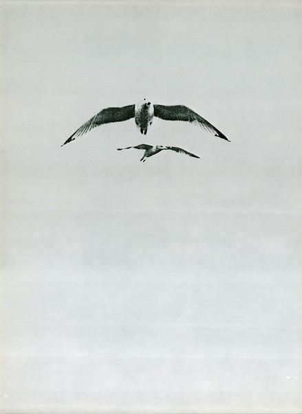 uschist-er-1975~0077.jpg