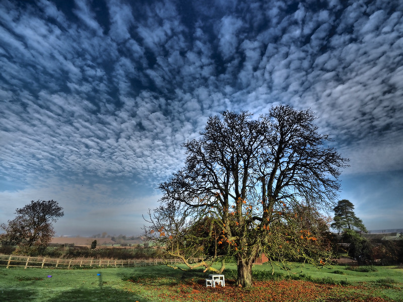 Mackerel Sky colour