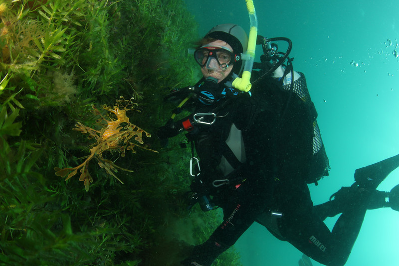Audrey and Leafy Sea Dragon