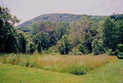 2004 MT. TOM TRAIL at THE PRATT CENTER
