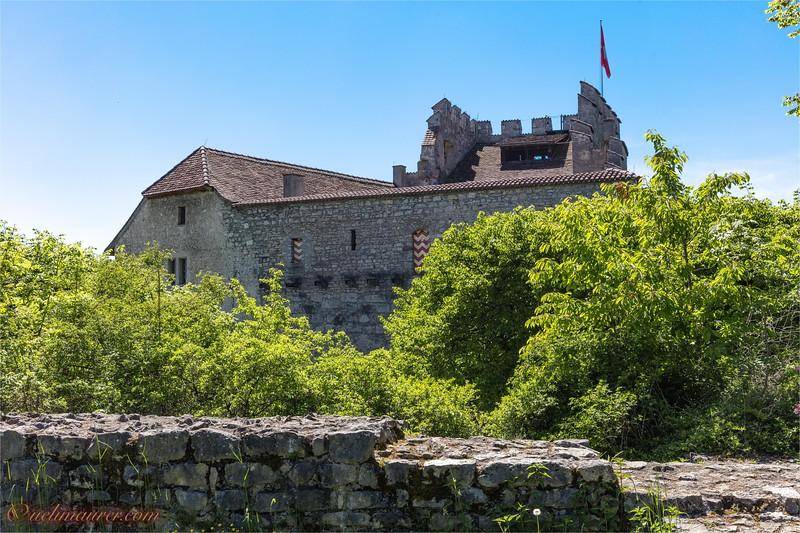 2017-05-17 Schloss Habsburg - 0U5A7334.jpg