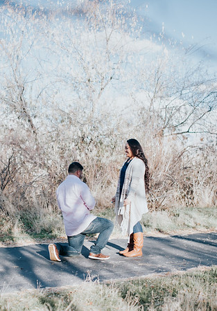 Saia + Vee // Utah Engagement Photographer