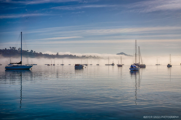Foggy Sausalito Mornings