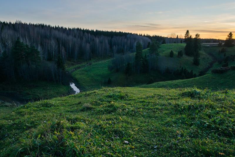 Woods_Finland-5.jpg