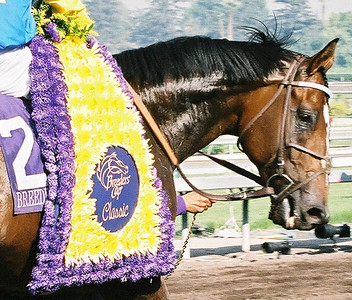 2003 Breeders Cup