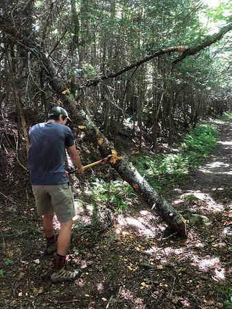 Axfest 2018 (Moosilauke Trailwork 7/21/18)