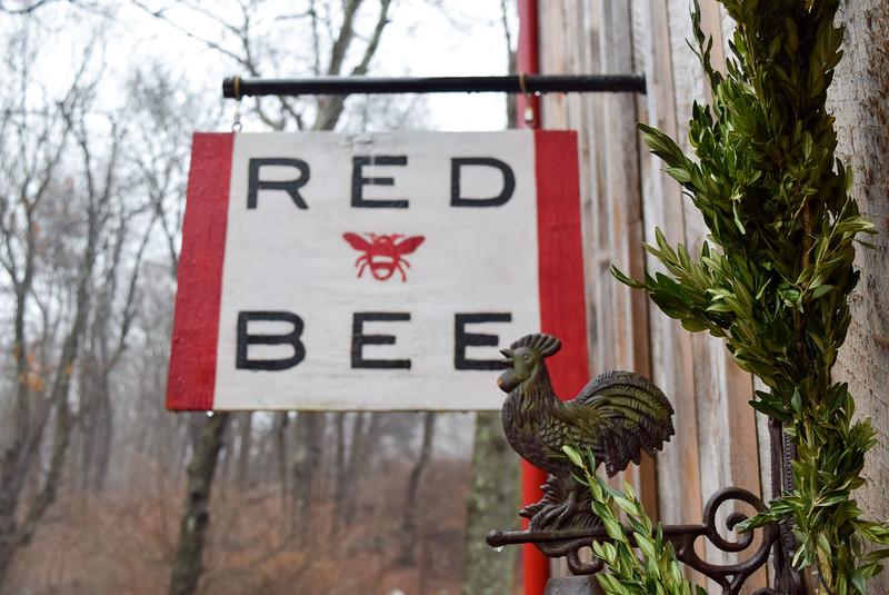 Red Bee (10).jpg