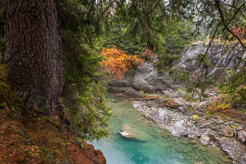 Herbst-im-Rheinwald-D-Aebli-007.jpg