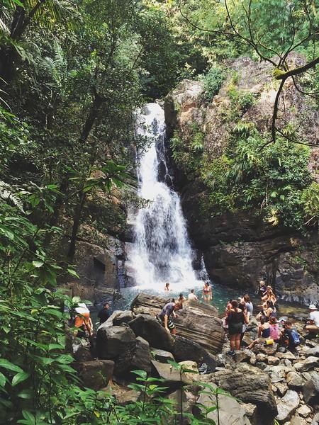 2015 • El Yunque National Rainforest / Rio Grande, PR