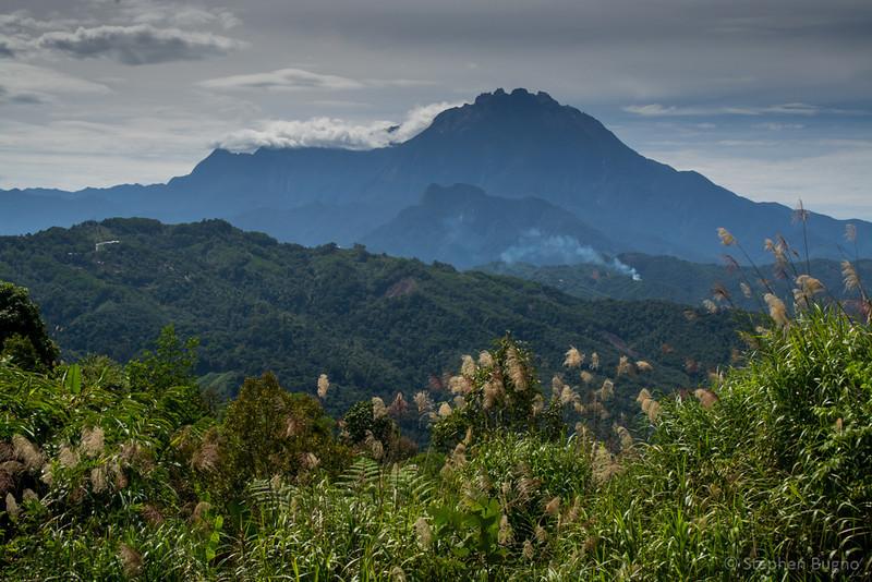 Kinabatangan River-3481.jpg