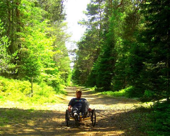 Bdale trail, june 15, 2013.CIMG8812sws.jpg